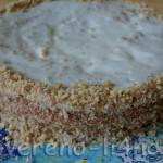fasolevyi-tort